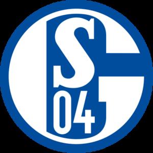 schalke 04 fußballschuhe
