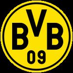 bvb fussballschuhe